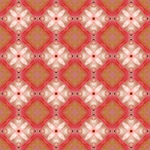 tiling_IMG_3059_1