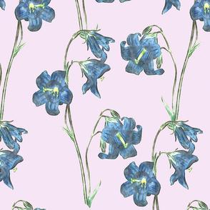 Floral Print Blue over pink