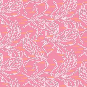 Kelp on Pink with Orange Fish