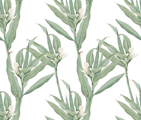 Tropical with White Flower wallpaper - katebutler - Spoonflower