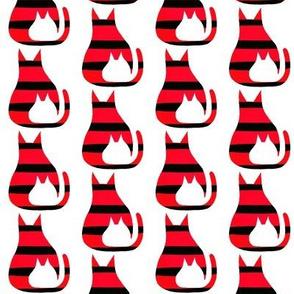 Cat Kitten Red Black Stripes