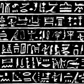 Egyptian Hieroglyphics on Black - Small