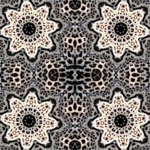 leopard kalei