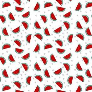 watermelon // fruit summer mini print