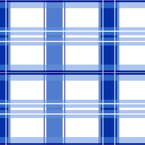 Alesund Tartan in bright ink