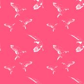 Birds in Paris - Pink