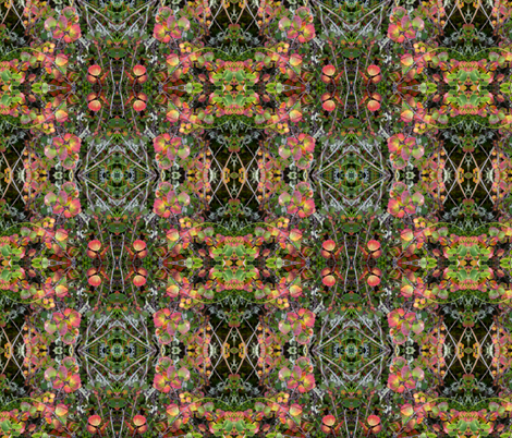 Flowers of the Denali_Tundra fabric by suzanne_myers_otto on Spoonflower - custom fabric
