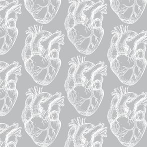 Hearts Anatomical White on Gray