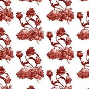 Poppies 2015