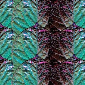 Redbud Leaf Stripe aqua