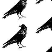 "Crows (4"")"