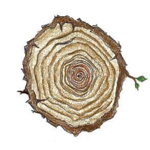 TreeSlice