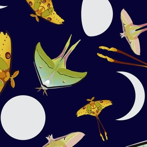 Lunar Moths