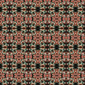 Christmasfungus0002