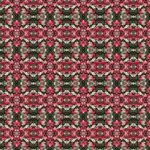 Christmasfungus0003