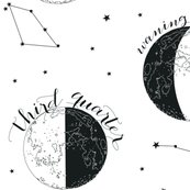 Rrrrrrrrrmoon_fabric_final_shop_thumb