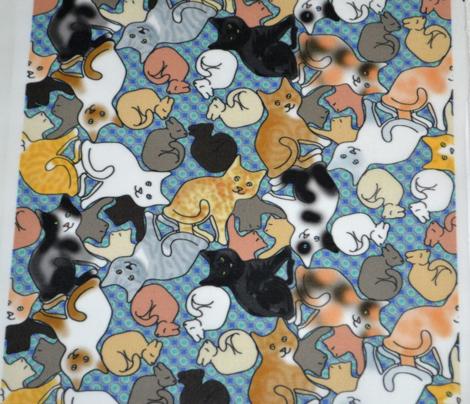 Rcolored_cat_curls_on_aqua_comment_645579_preview