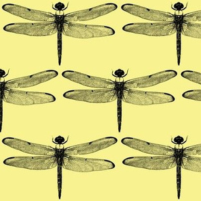 Dragonflies on Yellow // Large