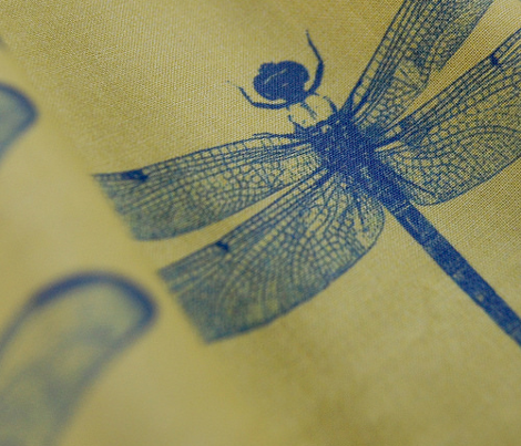 Dragonfly - Blue & Yellow