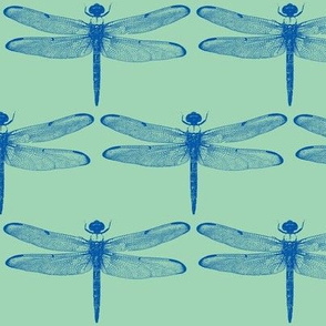 Blue Dragonflies on Green // Large