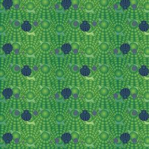 Blue Green Scallops