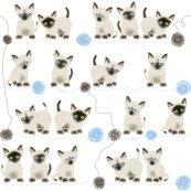 Rrsiamese-kitten-wrap-v1-01_shop_thumb