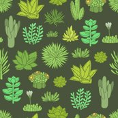 Rrsucculents-color-pattern_shop_thumb
