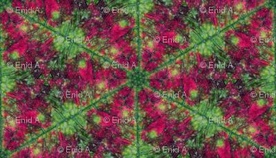 Leaf Hexagon 1
