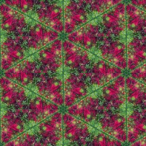 Leaf Hexagon 1
