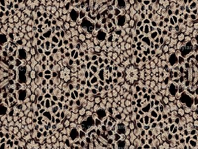 Dark Antique Lace