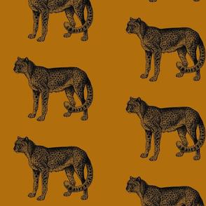 Cheetah on Gold
