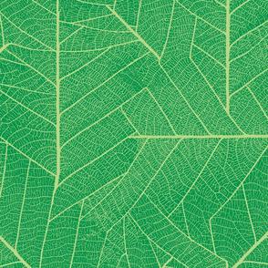 Leaf-emerald