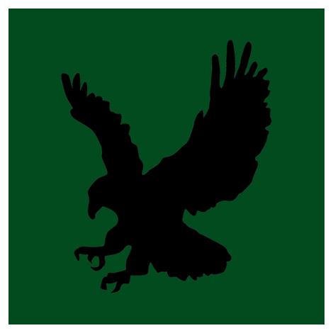 Eagle on Green Swatch fabric by rainbowlighthealing on Spoonflower - custom fabric