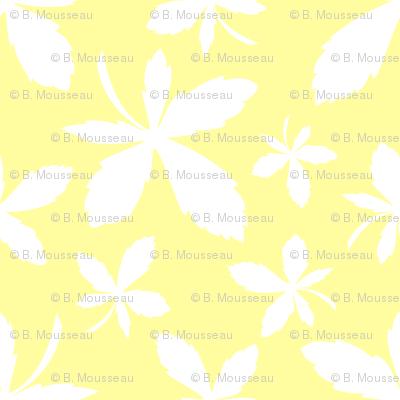 Mi-Ke Coordinate - Maple Leaves