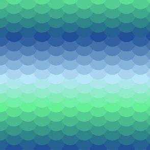 04802228 : scales of summer seas
