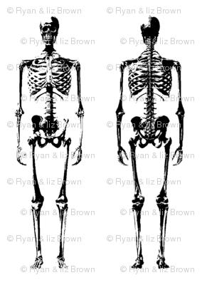 Skeleton Mug Shot // Large