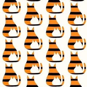 Cat Kitten Tiger Stripes