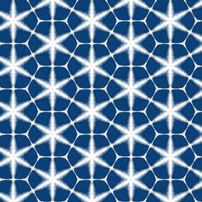 Indigo Blue Shibori Pattern