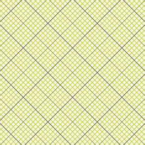 04812727 : diagonal graph : olive