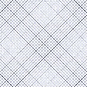 04812756 : diagonal graph : 0000FF