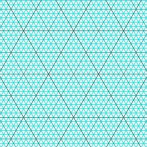 04813030 : triangle graph : CT