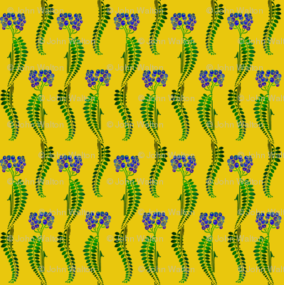 fern_berries with yellow