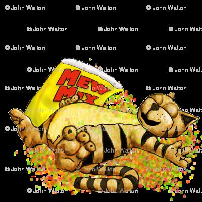 motas_the_CAT
