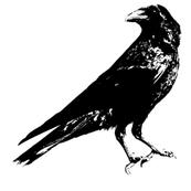 """Crow (7"""")"""