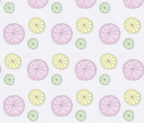 citrus-trio fabric by j_schnaak on Spoonflower - custom fabric