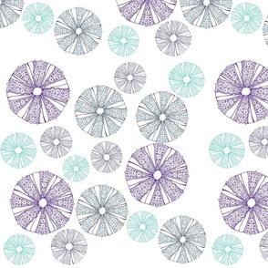 4518524_rWhite_Sea_Urchin