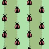 Lady Bug stripes