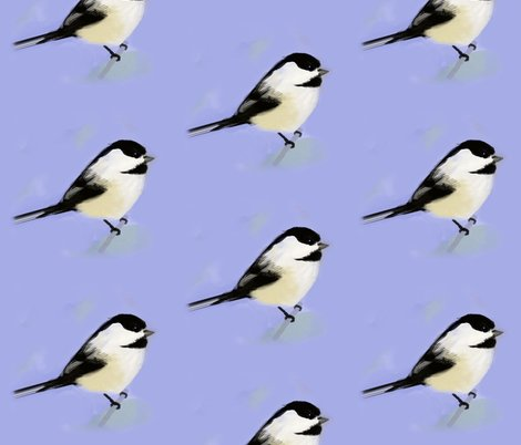 Rrlarge_chickadee_4_shop_preview