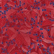 Rrvirginia_creeper_red_shop_thumb