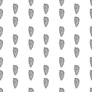 Pine cone white